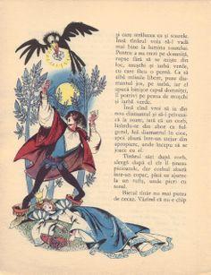 Livia Rusz - Povesti de aur Children's Book Illustration, Book Illustrations, Aur, Fairy Tales, Illustrator, Fairytale Book, Vintage, Drawings, Artwork