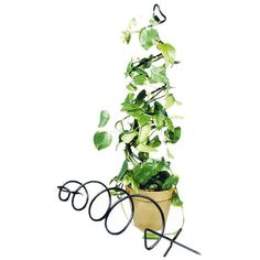 I pinned this Spiral Trellis from the Green Thumb event at Joss and Main!
