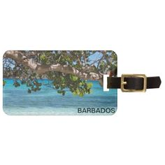 =>>Cheap          Barbados Beach Scenery Tags For Bags           Barbados Beach Scenery Tags For Bags we are given they also recommend where is the best to buyThis Deals          Barbados Beach Scenery Tags For Bags lowest price Fast Shipping and save your money Now!!...Cleck Hot Deals >>> http://www.zazzle.com/barbados_beach_scenery_tags_for_bags-256242345580568565?rf=238627982471231924&zbar=1&tc=terrest