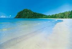 Image result for cape tribulation Cape, National Parks, Beach, Travel, Outdoor, Vacations, Cities, Mantle, Outdoors