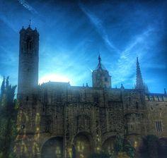 Joies que tinc el plaer de veure tot sortint de la feina. #ViaLaietana #catedral #barcelona #bcn #igersbcn #igersoftheday #instasky #bluesky #gotic