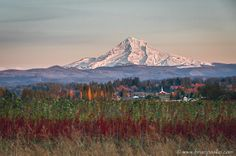 Nature and landscape images by Brian Pasko Photography, serving the Portland Oregon Metropolitan area and beyond.