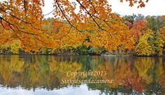 Time To Give Thanks by PJ Parraga on Etsy