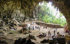 Liang Bua cave - site where Homo Floresiensis bones were found.