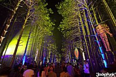 The Electric Forest Festival