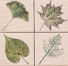 Real Leaves Poetic Prints Rubber Stamps (4 Leaves Stamps: Maple Leaf, Ginkgo Leaf, Redbud Leaf and etc.) Woodblock Craft Stamp (LL684)
