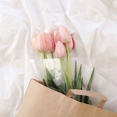 Pink tulips in pink paper bag. Flowers lay on white bed My Flower, Fresh Flowers, Beautiful Flowers, Flower Crown, Spring Flowers, Beautiful Images, Plants Are Friends, No Rain, Deco Floral