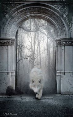 I steped back as yhe wolf from the painting started creeping up to me.