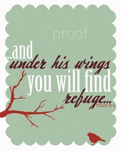 and under His wings you will find refuge. Quotable Quotes, Bible Quotes, Me Quotes, Bible Verses, Scriptures, Psalm 91, Spiritual Inspiration, Faith In God, Words Of Encouragement