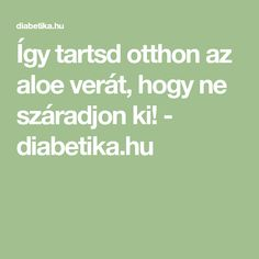 Így tartsd otthon az aloe verát, hogy ne száradjon ki! - diabetika.hu Neon, Math Equations, Garden, Garten, Neon Colors, Gardens, Tuin, Yard, Neon Tetra