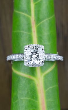 Would you say yes to this beautiful Milgrain Petite Halo Cushion Diamond Engagement Ring in White Gold?