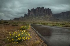 Road to the Superstitions by Sue Cullumber on Capture My Arizona // Rainy morning at the Lost Dutchman State Park near Mesa, Az
