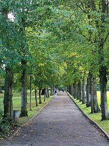 Alexandra Park, London - Wikipedia, the free encyclopedia
