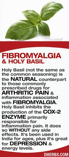 Holy Basil (not the same as the common seasoning) is the natural counterpart to those commonly prescribed drugs for arthritic pain & inflammation associated with fibromyalgia. Holy Basil inhibits the production of the Cox-2 enzyme primarily responsible for inflammation pain. It does so WITHOUT any side effects. It's been used in India for ages, plus it's great for depression & energy levels
