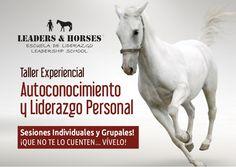 Autoconocimiento y Liderazgo Personal asistido con Caballos.