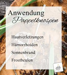 Waldapotheke: das Propolis der Bäume – Pappelknospensalbe Propolis, Health, Natural, Blog, Healthy Sleep, Fried Cabbage Recipes, Bud, Roots, Health Care