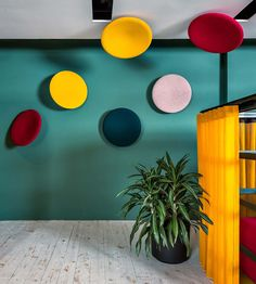 This high-performance acoustic wall and ceiling treatment marries design and function with the recognizable shape, reminiscent of a satellite dish. Acoustic Wall Panels, Sound Absorbing, Ceiling Treatments, Dose Of Colors, Happy Vibes, Breath Of Fresh Air, Around The Corner, Greenery, Bring It On