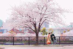 桜ノ宮公園で桜のロケーションフォト 和装