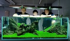 Adam Paszczela, aquascaper artist from ADA Polska , with its team ... pin by Aqua Poolkoh