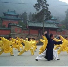 Tai Chi Chuan in China - Wudang Temple, Taoist priest leads students in Tai Chi forms. - #TaiChi #Taijiquan
