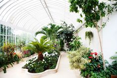 I NEED a conservatory