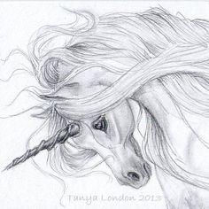 Realistic Unicorn Drawings | Unicorn Drawing In Pencil Gray unicorn whispwan graphite