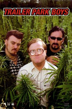 Canadians are way funny.  Love the Trailer Park Boys.