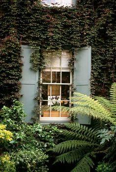 blue-green shutters