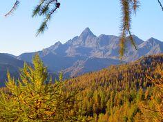 a mountain view of autumn