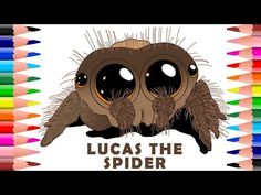 How To Draw And Colour Lucas The Cutest Spider Colouring Pages For Kids Youtube Spider Coloring Page Spider Drawing Coloring Pages For Kids