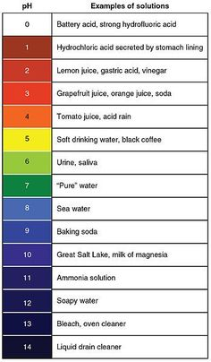 Learning how to determine your soil pH is important to your garden. Learn about soil pH, how to correct it, and when . Chemistry Classroom, Chemistry Notes, Chemistry Lessons, Teaching Chemistry, Science Notes, Science Chemistry, Organic Chemistry, Chemistry Basics, Chemistry Worksheets
