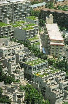 PAM - groendaken - Tadao Ando