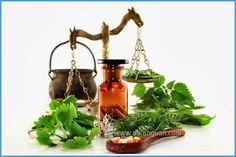 Mengenal Lebih Jauh Paham Herbalisme (Herbalism History)