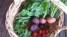Growing your own vegetables and gain some vitamin G.  https://greenerme.wordpress.com/2015/02/20/getting-much-needed-and-often-forgotten-vitamin-g/