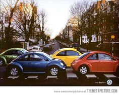 The beetles. Lol