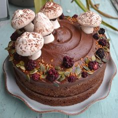 Are those meringue mushrooms? Cake Gallery - Lovecrumbs cake shop, Edinburgh