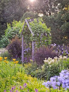 Betony, lilies and filipendula, aka Meadowsweet, grace the area around the arbor.