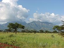 Uganda - Monte Kadam