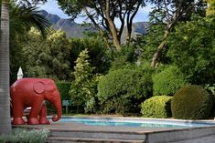This picturesque guest house is just an hour's drive from Cape Town, situated in the peaceful Winelands country… Cape Dutch, Africa Travel, Jacuzzi, Modern Luxury, Swimming Pools, Elephant, Rest, Gardens, Mountains