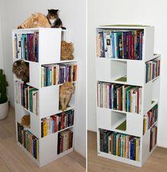 estante de livros e gatos