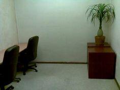 Oficinas de trabajo en grupo con capacidad para tres personas.