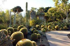 Jardines Que Me Gustan: LABORES EN EL JARDÍN PARA MARZO (los 7 principios ...