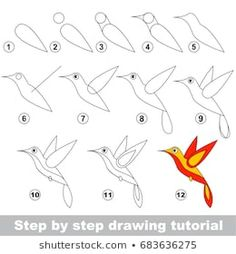 Kid game to develop drawing skill with easy gaming level for preschool kids drawing educational tutorial for Funny Hummingbird Funny Kid Drawings, Art Drawings For Kids, Bird Drawings, Drawing For Kids, Easy Drawings, Art For Kids, Drawing Lessons, Drawing Skills, Drawing Techniques