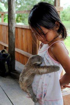 Un #paresseux dans les bras d'une petite #fille ou l'inverse?