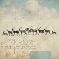 riders on the storm - Fiona Watson. 10 x 10 inch original digital print on 300 g Somerset paper.