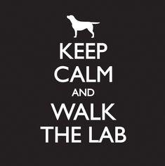 Keep calm and walk the lab