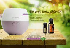 Refuerza las defensas naturales de tu cuerpo con el difusor en frío pétalo con Aceite esencial Cardamomo y mezcla On Guard.