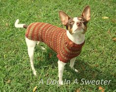 Picante Pullover - The next generation in custom-fit dog sweaters from A Dog In A Sweater. Includes matching hat pattern.