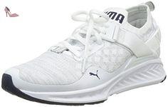 Ignite Evoknit Lo, Chaussures de Running Compétition Homme, Blanc White-Vaporous Gray Black 02, 43 EUPuma