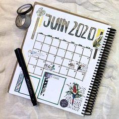 Juin 2020 avec Daphné - Collection Safari - Blueberrypapeterie